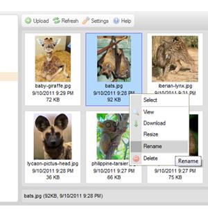 CKFinder for ASP Ekran Görüntüleri - 3