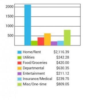 Home Budget Ekran Görüntüleri - 4