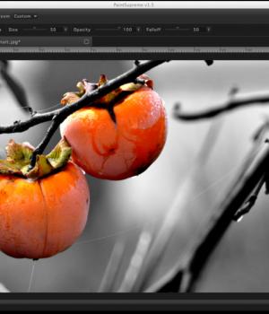 PaintSupreme Ekran Görüntüleri - 3