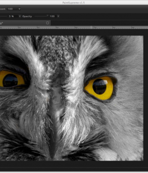 PaintSupreme Ekran Görüntüleri - 1