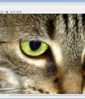 PhotoZoom Classic Ekran Görüntüleri - 1