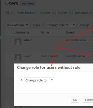 User Role Editor Ekran Görüntüleri - 2