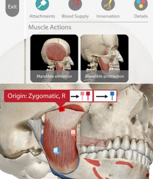 Human Anatomy Atlas Ekran Görüntüleri - 1