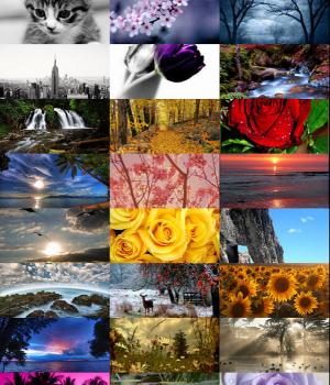 Arka Ekran Görüntüleri - 4