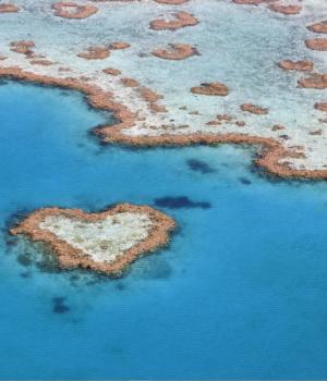 Bing'in En İyileri: Avustralya 2 Teması Ekran Görüntüleri - 1