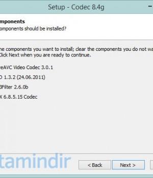 Codec Ekran Görüntüleri - 1
