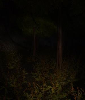 Forest Ekran Görüntüleri - 2