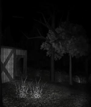 Forest Ekran Görüntüleri - 4