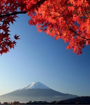 Japonya'da Sonbahar Rengi Teması Ekran Görüntüleri - 2