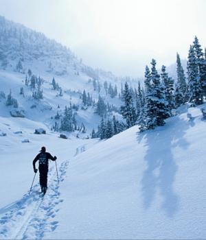 Kar Sporları Teması Ekran Görüntüleri - 1