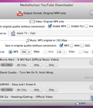MediaHuman Youtube Downloader Ekran Görüntüleri - 2