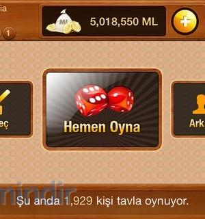 Mynet Tavla Ekran Görüntüleri - 2