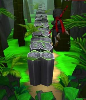 Ninja Feet of Fury Ekran Görüntüleri - 2