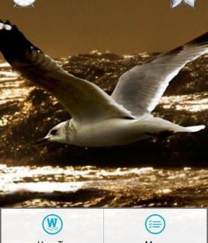 Ocean Sounds Relax n Sleep Ekran Görüntüleri - 5
