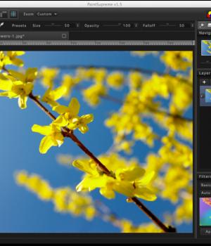 PaintSupreme Ekran Görüntüleri - 7