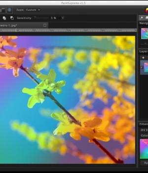 PaintSupreme Ekran Görüntüleri - 8