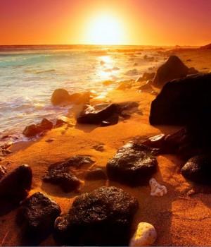 Parlayan Kumsallar Teması Ekran Görüntüleri - 2