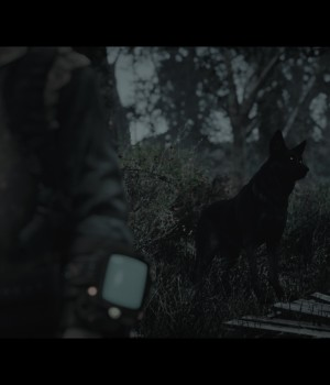 PILGRIM - Dread the Commonwealth Ekran Görüntüleri - 2