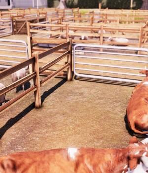 Real Farm Ekran Görüntüleri - 10
