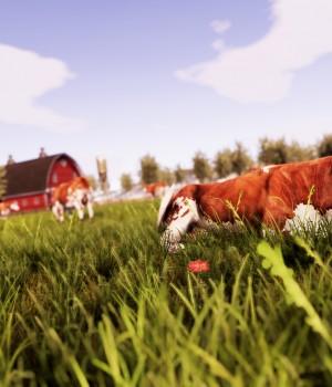 Real Farm Ekran Görüntüleri - 19