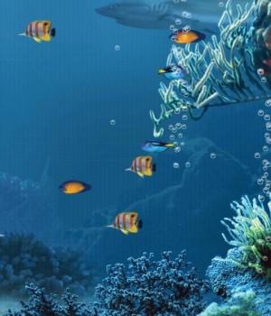 Shark Reef Live Wallpaper Free Ekran Görüntüleri - 2