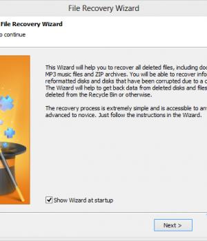 Starus File Recovery Ekran Görüntüleri - 6