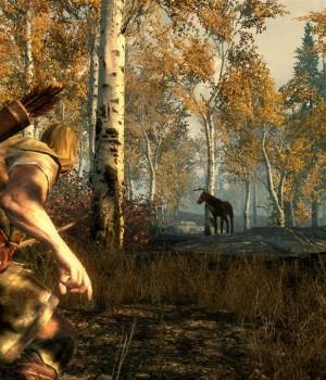 The Elder Scrolls V: Skyrim Ekran Görüntüleri - 10