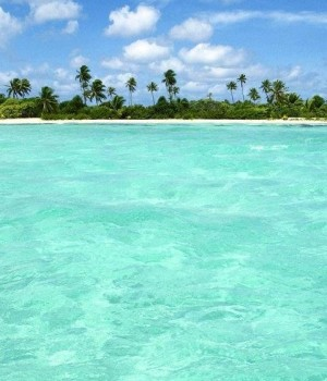 Tropical Paradise Wallpapers Ekran Görüntüleri - 3