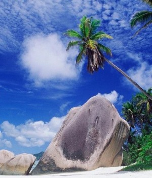 Tropical Paradise Wallpapers Ekran Görüntüleri - 2