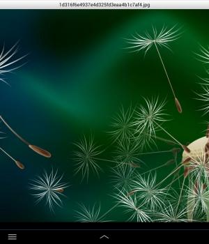 WinZip Android Ekran Görüntüleri - 8