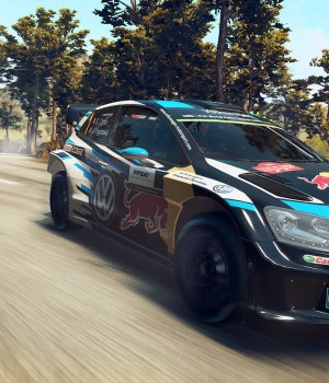 WRC 5 Ekran Görüntüleri - 3