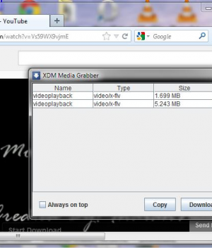 Xtreme Download Manager Ekran Görüntüleri - 3