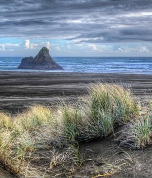Yeni Zelanda Teması Ekran Görüntüleri - 1