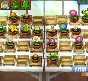 Plants vs Zombies Ekran Görüntüleri - 1