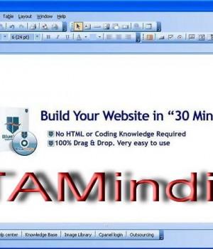 BlueVoda Website Builder 9.1 Ekran Görüntüleri - 1