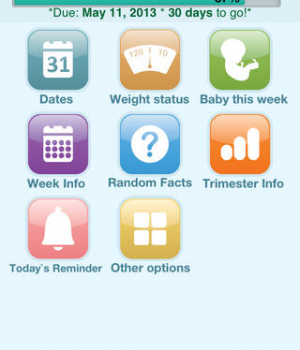 Happy Pregnancy Ticker Ekran Görüntüleri - 5