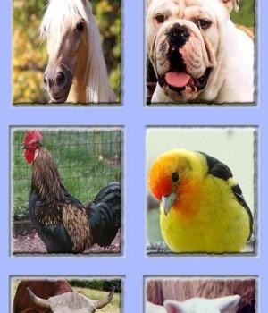 Hayvan Sesleri - Bebekler için Ekran Görüntüleri - 3