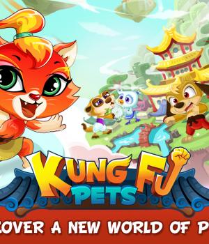 Kung Fu Pets Ekran Görüntüleri - 5
