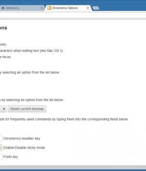 ChromeVox Ekran Görüntüleri - 1