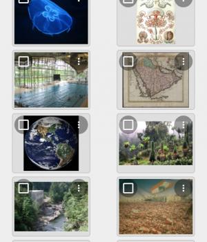 DiskDigger Ekran Görüntüleri - 4