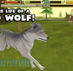 Wildlife Simulator: Wolf Ekran Görüntüleri - 4