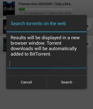 BitTorrent Ekran Görüntüleri - 4