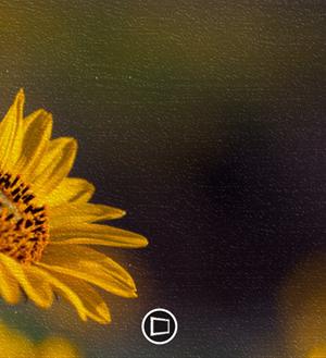 FreshPaint Ekran Görüntüleri - 3