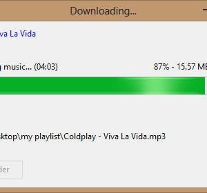 Internet Music Downloader Ekran Görüntüleri - 2
