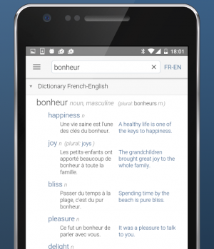 Linguee Ekran Görüntüleri - 5