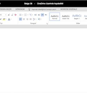 Microsoft Word Online Ekran Görüntüleri - 1