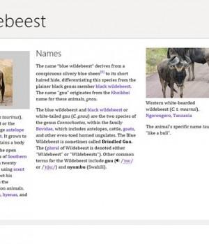 Wikipedia Ekran Görüntüleri - 1