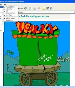 Save Flash 4.0 Ekran Görüntüleri - 2