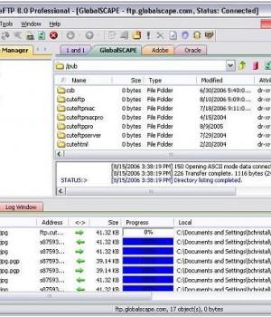 CuteFTP Professional Ekran Görüntüleri - 1