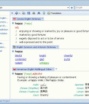 Lingoes Ekran Görüntüleri - 3